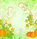 Autumn textured orange pumpkin background green Royalty Free Stock Images