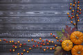 Autumn Thanksgiving Background Royalty Free Stock Photo
