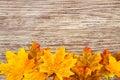 Autumn Thanksgiving Background Royalty Free Stock Photo