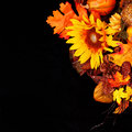 Autumn or Thanksgiving Bouquet over black background Royalty Free Stock Photo