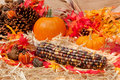 Autumn theme with corn Royalty Free Stock Image