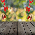 Autumn theme and empty wooden deck table ready for product montage display Stock Photos