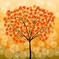 Autumn tree Royalty Free Stock Photography