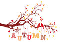 Autumn tree branch vector birds on with falling leaves background illustration Royalty Free Stock Image