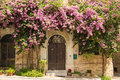 Autumn tree a mediterranean house in corinaldo with an old door and a with flowers climbing the wall Royalty Free Stock Photography