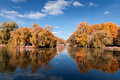 Autumn tree reflection in water lake at the daytime Royalty Free Stock Photo