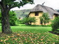 Autumn tree and vacation house in drakensberg shot monks cowl area mountains south africa Stock Photo