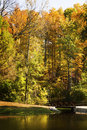 Autumn trees a beautiful scene at a lake park that shows the vibrant colors of Royalty Free Stock Images