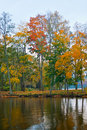 Autumn trees and lake Stock Photo