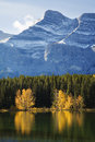 Autumn Trees Reflected on Lake with Rocky Mountains in Banff Stock Images
