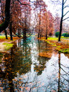 Autumn trees reflected in water sempione park milan italy Royalty Free Stock Photos