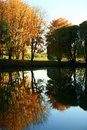 Autumn trees reflection Royalty Free Stock Image