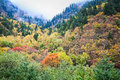 Autumn in the valley Royalty Free Stock Photo
