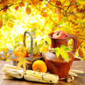 Autumn vegetables on golden forest background Royalty Free Stock Photo
