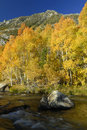 Autumn view of a mountain stream Stock Photo