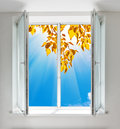 Autumn view from window Royalty Free Stock Photo