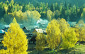 Autumn village  Baihaba, xinjiang,china Royalty Free Stock Photo