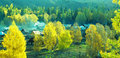Autumn village panorama   Baihaba, xinjiang,china Royalty Free Stock Image