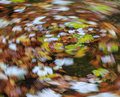 Autumn vortex cautumn of colors Royalty Free Stock Images