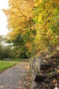 Autumn walk along the river fulda Royalty Free Stock Photo