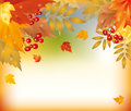 Autumn wallpaper with maple leafs. Royalty Free Stock Photos