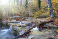 Autumn waterfall beautiful flowing through the forest with a lot of fallen leaves Stock Image