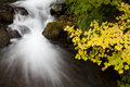 Autumn Waterfall, nature stock photography Stock Photos