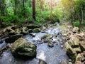 Autumn waterfall stream scene