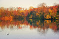 Autumn waterscape lake with beautiful trees Royalty Free Stock Images