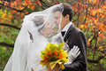 Autumn wedding Royalty Free Stock Images