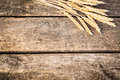 Autumn wheat on old wood texture Royalty Free Stock Photo