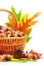 Autumn wicker basket Stock Photos