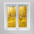 Autumn window Royalty Free Stock Photo