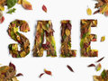 Autumn / Winter Sale Type Stock Photography