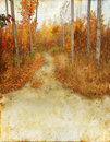 Autumn Woods Trail on Grunge Background Stock Photography