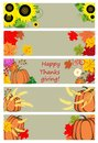 Autumnal banners for thanksgiving day Royalty Free Stock Photo