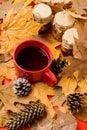 Autumnal beverage with homemade natural sweets. Natural homemade treats autumn season keep healthy. Set three jams honey Royalty Free Stock Photo