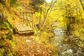 Autumnal bezrucovo udoli valley with chomutovka river in krusne hory mountains czech republic Stock Photo