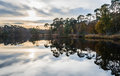 Autumnal colors reflected in a small lake trees optimal the mirror smooth water surface of natural pond Royalty Free Stock Photo