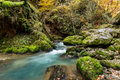Autumnal creek with beautiful mossy stones and blue water in transylvania Stock Photo