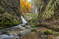 Autumnal creek with beautiful mossy stones and blue water in transylvania Royalty Free Stock Photos
