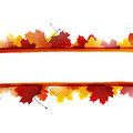 Autumnal design Royalty Free Stock Photo