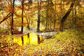 Autumnal forest lagoon in bezrucovo udoli valley in krusne hory mountains czech republic Royalty Free Stock Image
