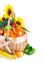 Autumnal harvest vegetables and fruits in basket vegetable fruit on white background Royalty Free Stock Images
