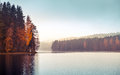 Autumnal landscape with threes on a lake coast fog and still colorful tonal filter photo correction Stock Photo