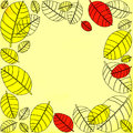 Autumnal leaves frame Royalty Free Stock Photo