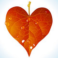 Autumnal love Stock Images