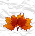 Autumnal maple leaves, crumpled paper texture Royalty Free Stock Photo