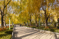 Autumnal park the landscape of longtan in taiyuan shanxi chian Royalty Free Stock Photography