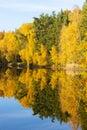 Autumnal pond Royalty Free Stock Image